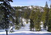 juniper-creek-winter-2