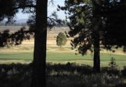 northstar-golf-homes